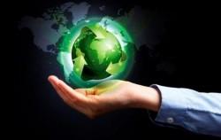 حقائق عن رئة الأرض ولماذا هي بهذه الأهمية؟