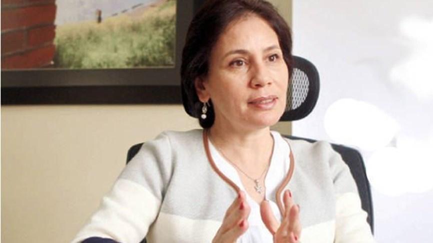 وزيرة الطاقة الأردنية: الغاز العربي إلى...